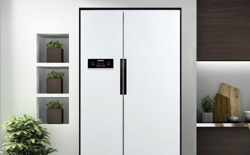 冰箱清洗(401L-500L)服务